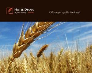 Hotel-Diana---Prosojnica-031